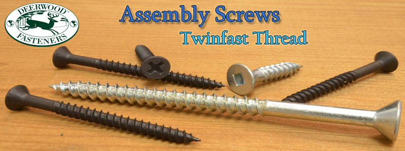 Assembly Screws TwinFast